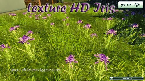 Texture-HD-Iris-Farming-simulator-2013-mods