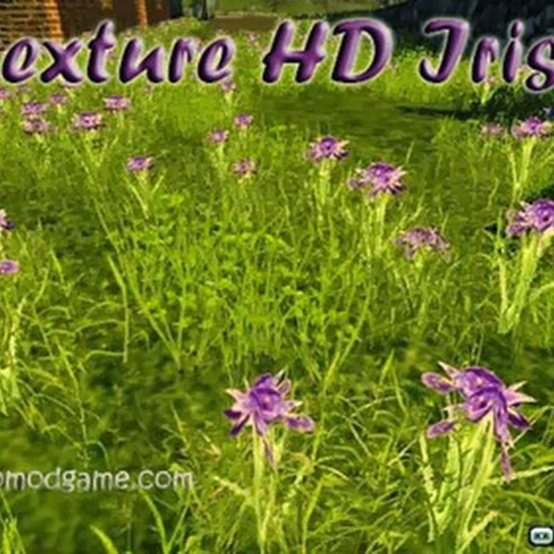 Farming simulator 2013 – Texture HD Iris v 1.0