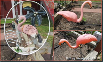 flamingo collage