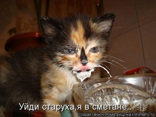 1333783320_kotomatrix-22