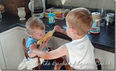 sharing sweetcorn