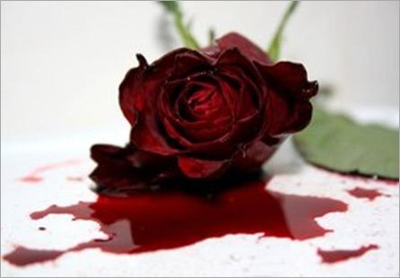 Sangre_de_rosa_by_LayraBlack - copia