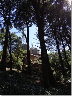 """Le """"Géant"""" perché sur son rocher et vu à travers les arbres """"qui piquent"""""""