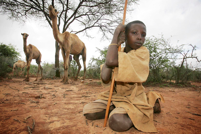 A Sudanese child and camels. blogs.anoiadiari.cat
