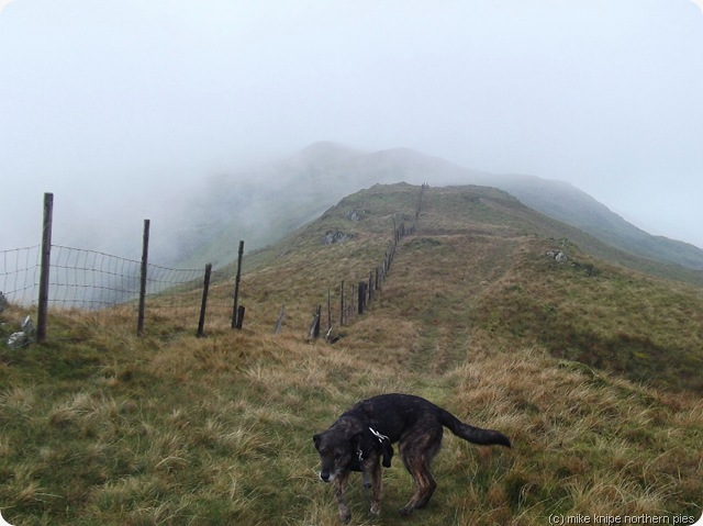 the ridge to cribin fawr