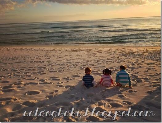 2013-11-09 beach (1246)edit
