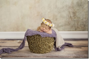 Newborn Photo - Lindsey Dutra Photography