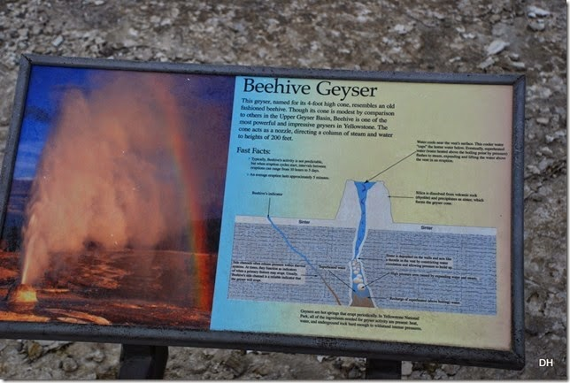 08-08-14 B Yellowstone NP (350)