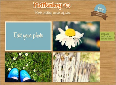 PicMonkey Screenshot