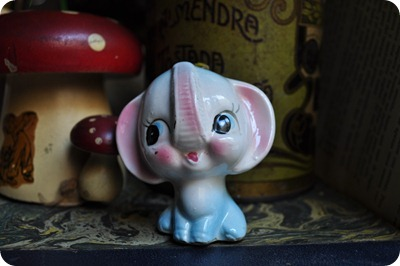 243 elefante