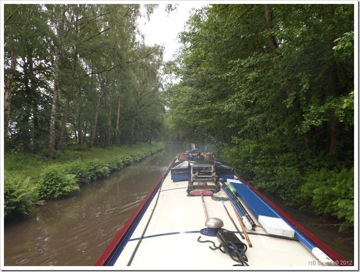 SAM_0636 Ravenshaw Wood