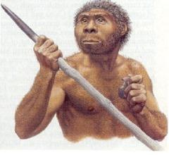 homo_erectus2