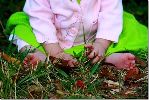 Finley Grass