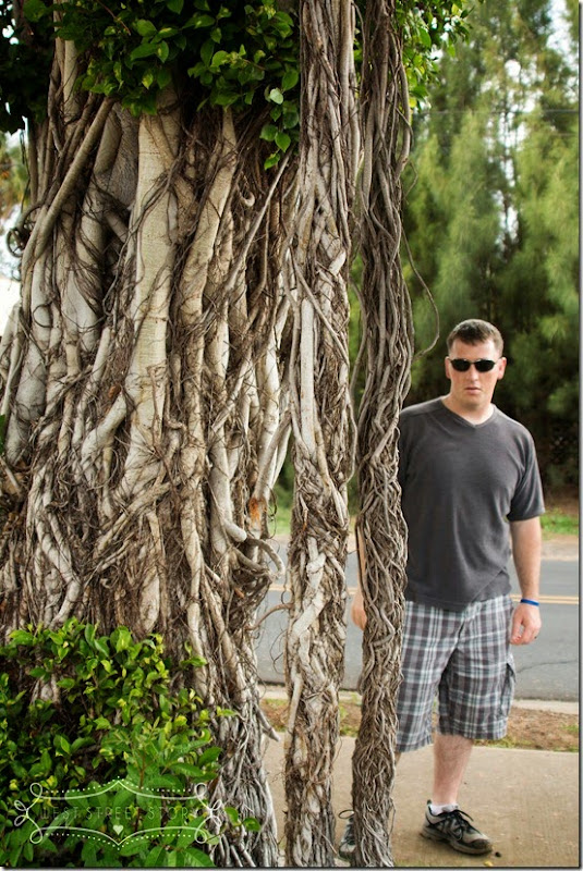 blog Maui 2013-125