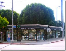 Santa-Monica-Hair-Salons-Next Salon-picture