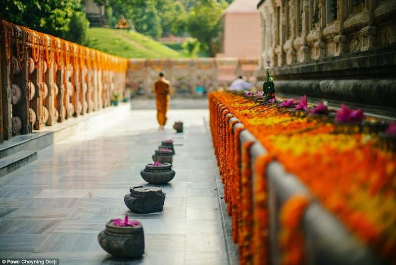 Phóng sự - phóng sự ảnh - Phật giáo thế giới - Người Áo Lam - 003