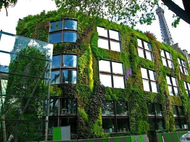 vertical garden by patrick blanc 4