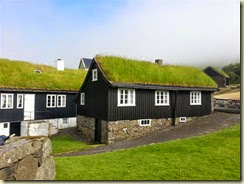 20140709_grass roofs museum (Small)