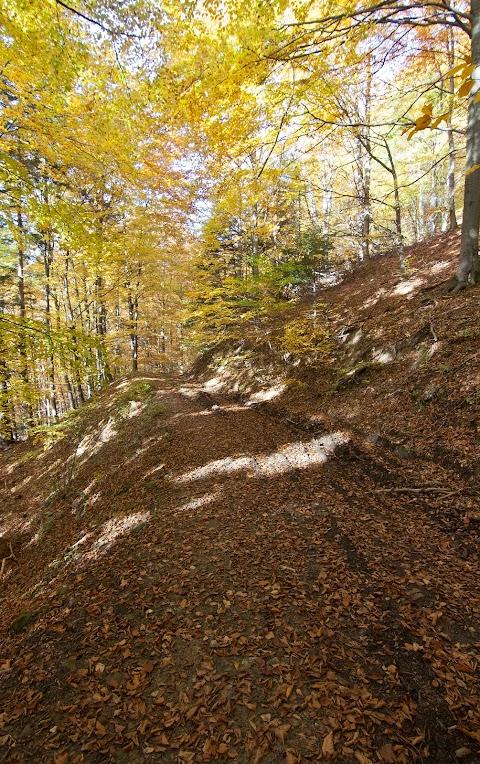 Potulky hrebeňom Hradovej hory