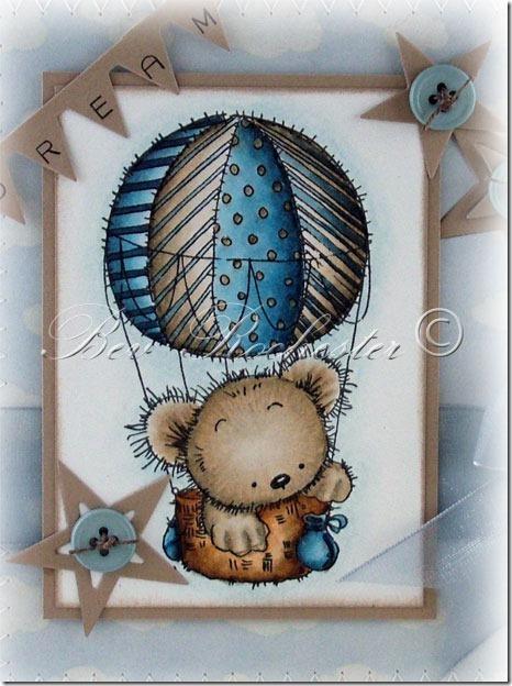 bev-rochester-lotv-patchwork-hot-air-balloon