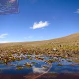 Arica - Parque Nacional Lauca  (24 de 48).jpg