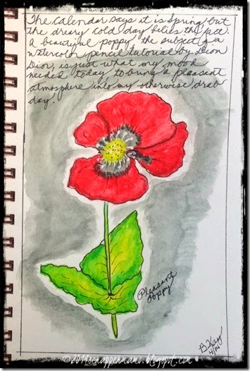 pleasant poppy watercolor pencil