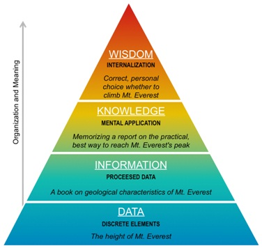 The Big Data Maslow's Pyramic