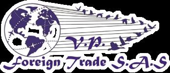 VP Foreign Trade - Asesores en Comercio Exterior-9-3
