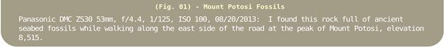 Image Title Bar 18 Mount Potosi Fossils