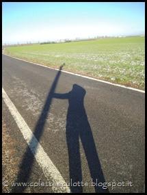 Passeggiata a Padulle - 29 gennaio 2014 (16)