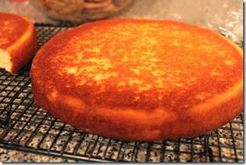 Strawberry Orange Cake 023