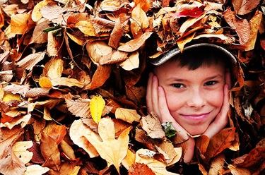 leaf play-5-w