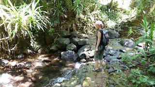 Waisali Forest Reserve.