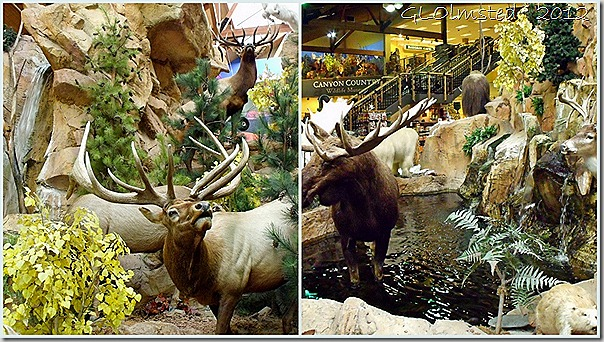 06 Stuffed animals at Cabela's AZ collage (1024x576)