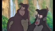 07 les singes amis de Tok