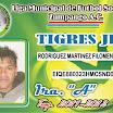 18 TIGRE.jpg