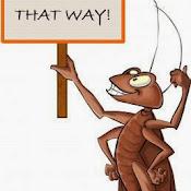 get-rid-of-ants.jpg