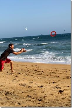 beach - mark frisbee
