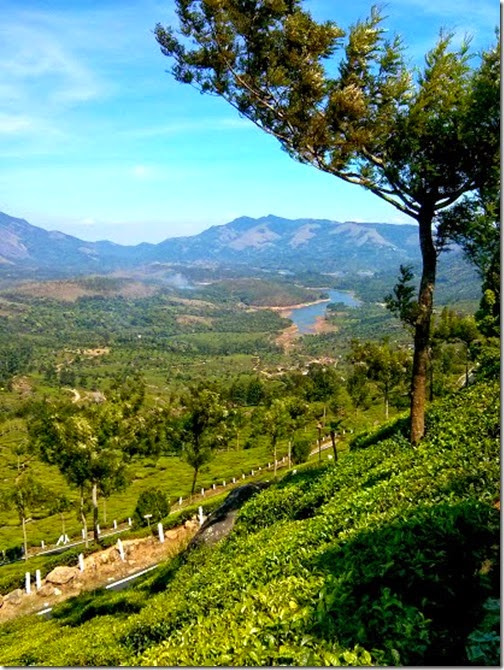 awesome munnar