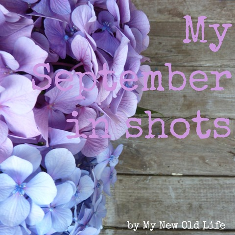 my september in shots