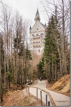 Neuschwanstein8