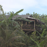 Tailand-Phuket (27).jpg