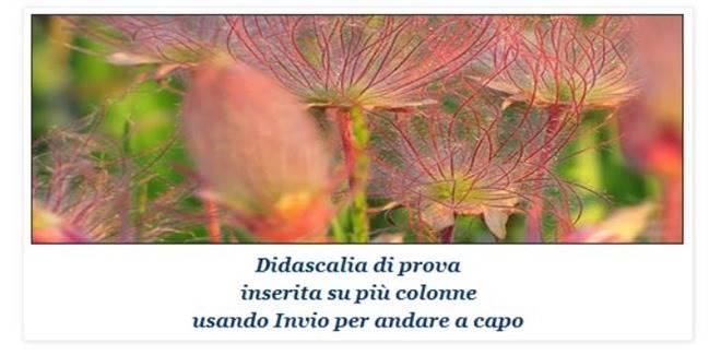 didascalia-blogger[9]