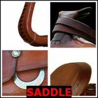 SADDLE- Whats The Word Answers
