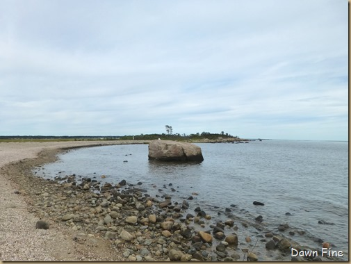 Hammonasset SP_051