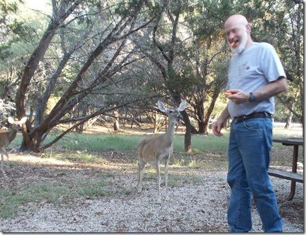 Deer visit 009