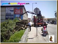 O desenvolvimento das Ruas de Espinho005Gazeta de Espinho