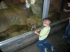 5-25-2011 zoo field trip 024