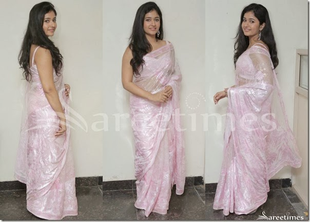 Poonam_Bajwa_Fancy_Saree