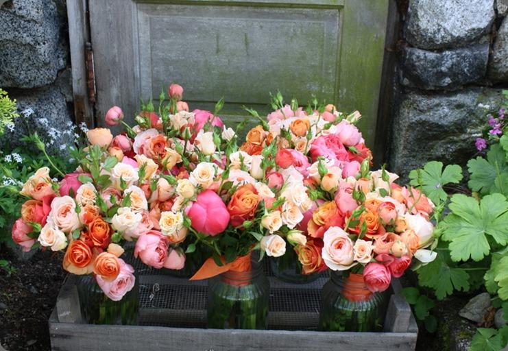 Tam_GardenRosePeonyRanunculaOrangeAndPink_Bridesmaids.6.2011 blush custom floral